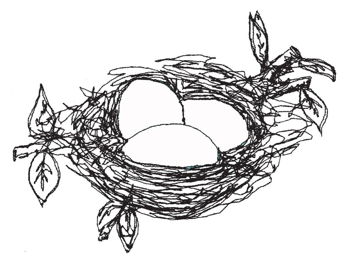 [nest]