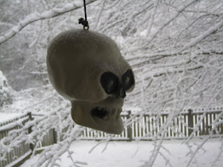 the Halloween skull decoration on my deck in Raleigh