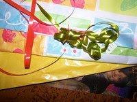 Pour Noël, recycler le papier cadeau dans ELFEE RECYCLE 100_0933