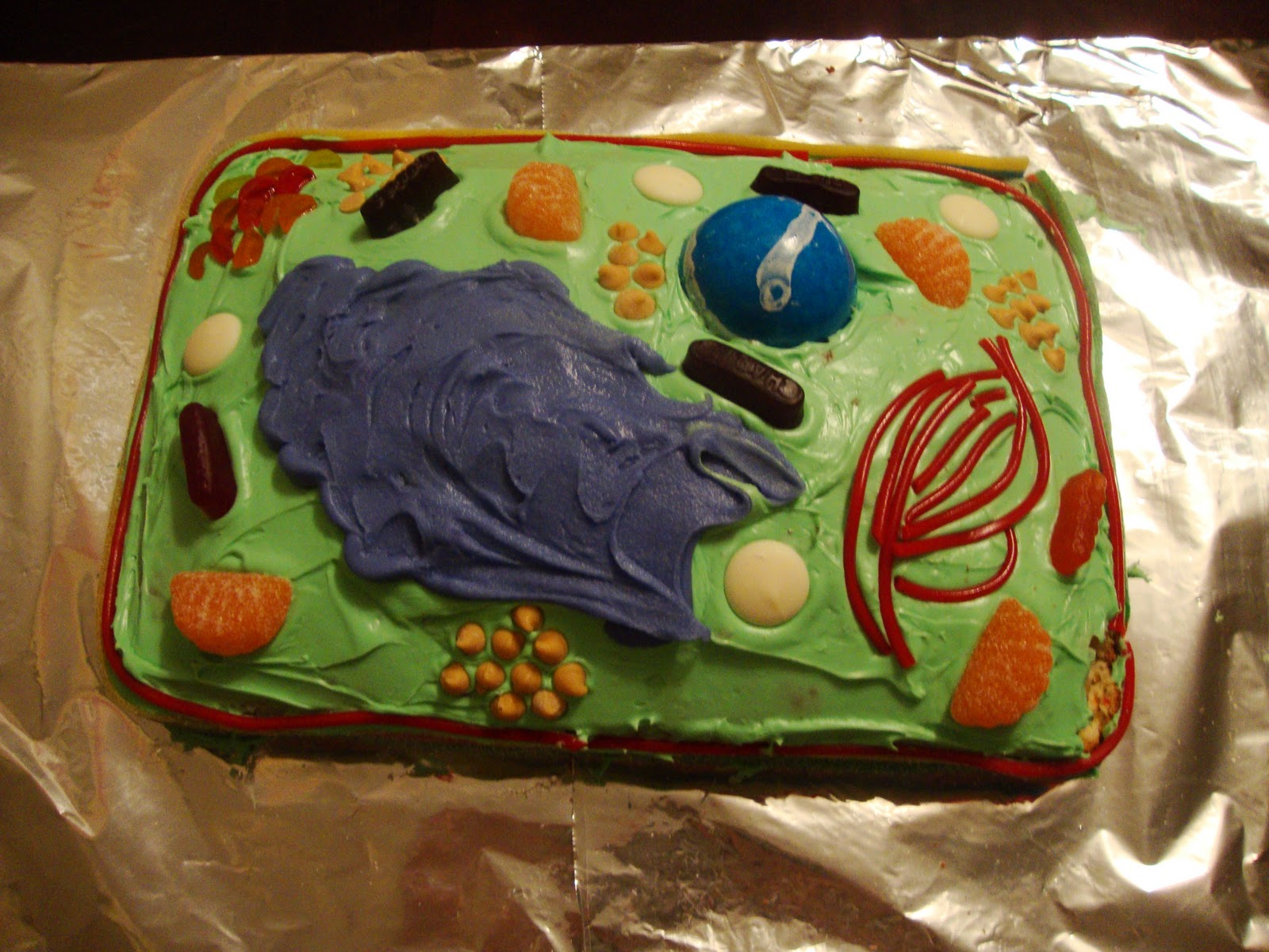 Basic Plant Cell Diagram Cake Color Sheet Wire Simple Labeled For Kids
