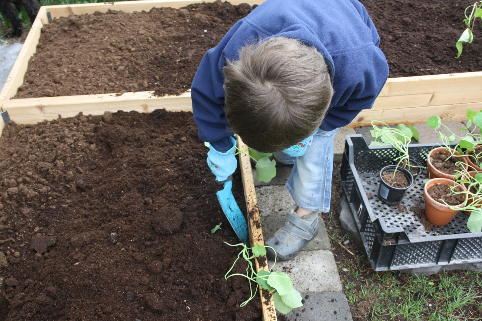 Njut i din trädgård: barnens trädgård   nu ska sådderna ut i ...