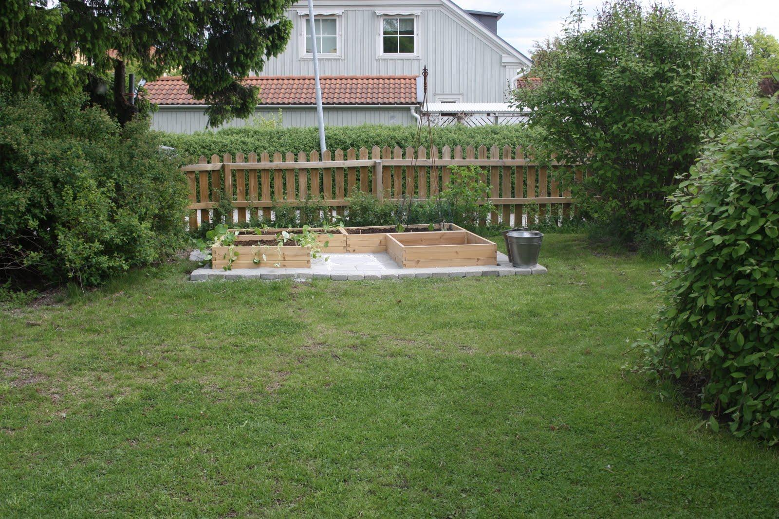 Njut i din trädgård: barnens trädgård   vi anlägger en köksträdgård