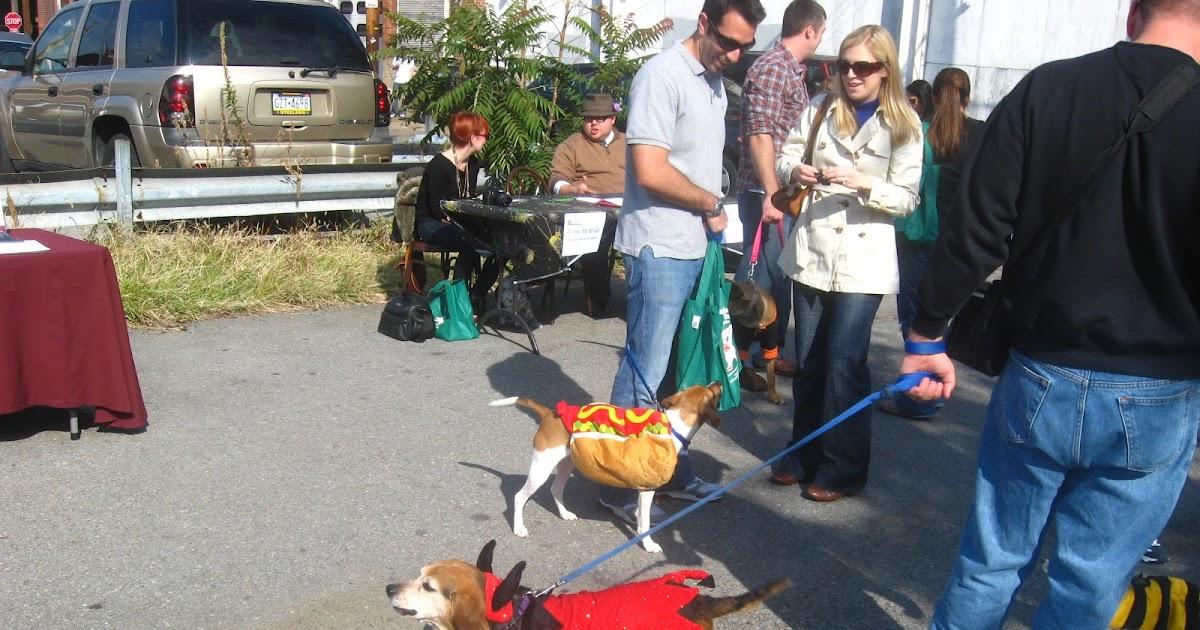 Dog Treats Pittsburgh