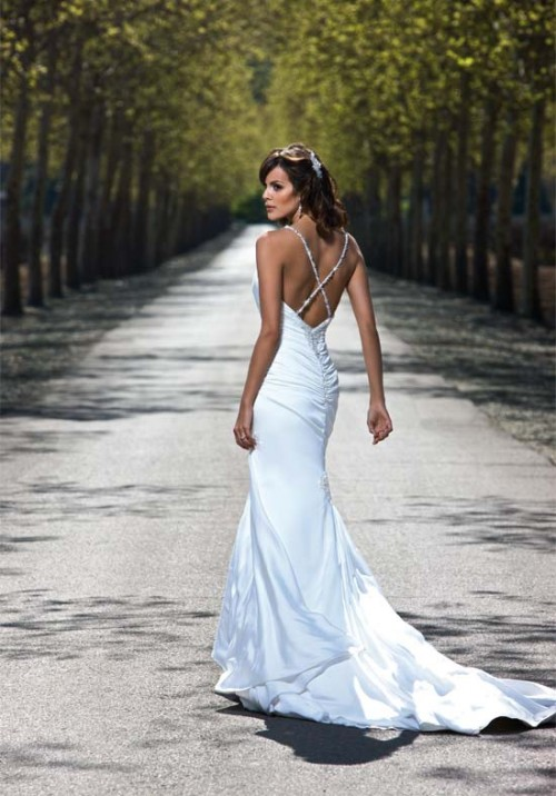 The Beauty of Wedding Dresses by