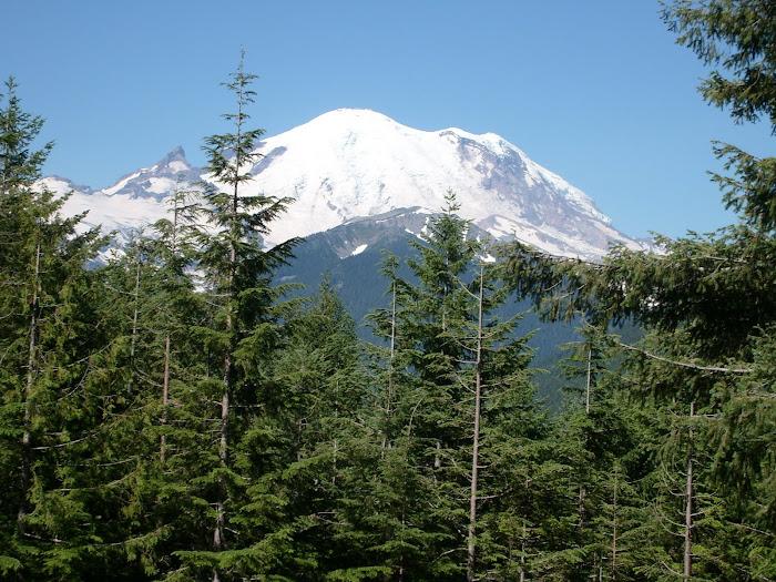 Mt, Rainier