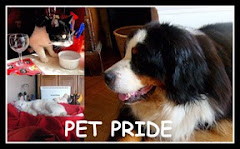 Sunday Pet Pride
