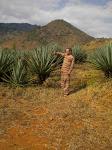 Limite Norte da Estepe Massai