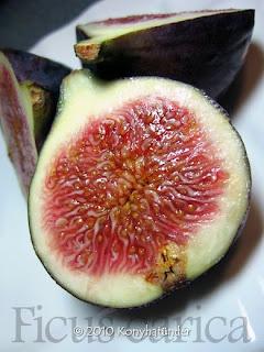 juicy-fig