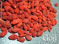 goji-berry-wolfberry