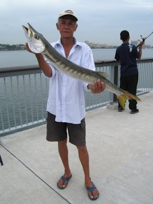 Black Panther Caught a Barracuda At Woodland Jetty Fishing Hotspots was created to share with those who are interested in fishing on tips and type of fishes caught around Woodland Jetty Fishing Hotspots.