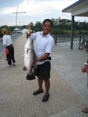Barramundi [Lates Calcarifer] Kim Bak Lor[Chinese], Siakap[Malay] Caught At Woodland Jetty Fishing Hotspots was created to share with those who are interested in fishing on tips and type of fishes caught around Woodland Jetty Fishing Hotspots.