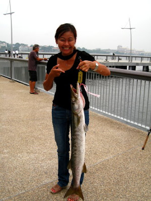 Barracuda Caught by Joanne at Woodland Jetty Fishing Hotspots was created to share with those who are interested in fishing on tips and type of fishes caught around Woodland Jetty Fishing Hotspots.