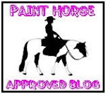 Paint Horse Lover Award