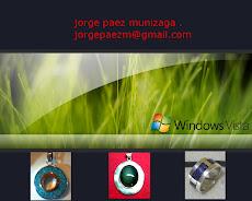 Windows Vista  2009
