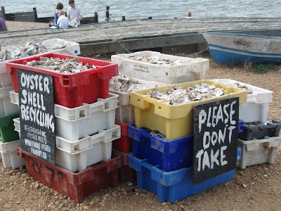 Whitstable+recycle+oyster+shells