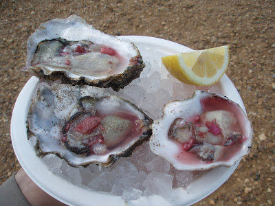 Whitstable+raw+oysters