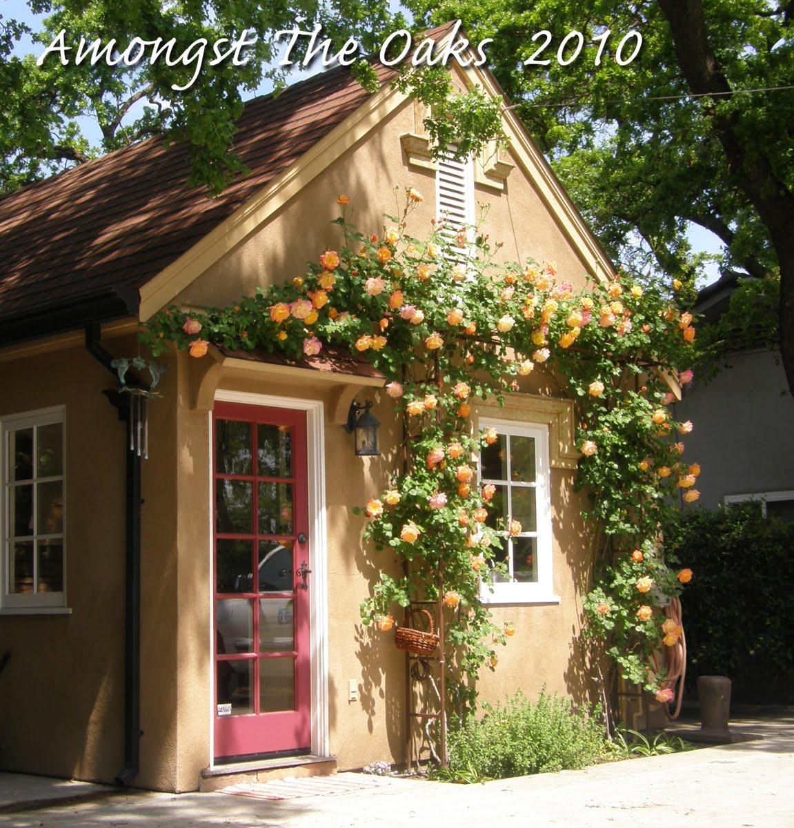 Kitchen Window From Outside: Amongst The Oaks: Outside My Kitchen Window