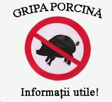 """Adevarul despre """"Gripa Porcina"""""""