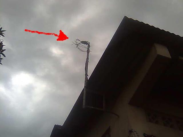 vol de câble électrique à Kinshasa