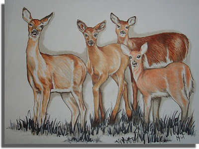 Copic Deer