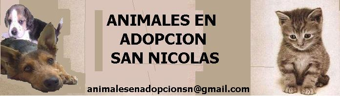 ANIMALES EN ADOPCION