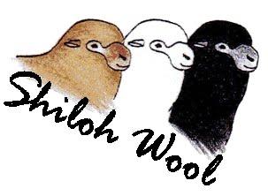 Shiloh Wool