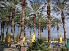 J.W. Marriott - Phoenix  2006