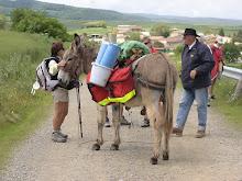Spanish Sherpa...