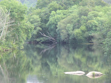 Reflections on Rio Tambre