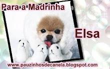 Madrinha Elsa
