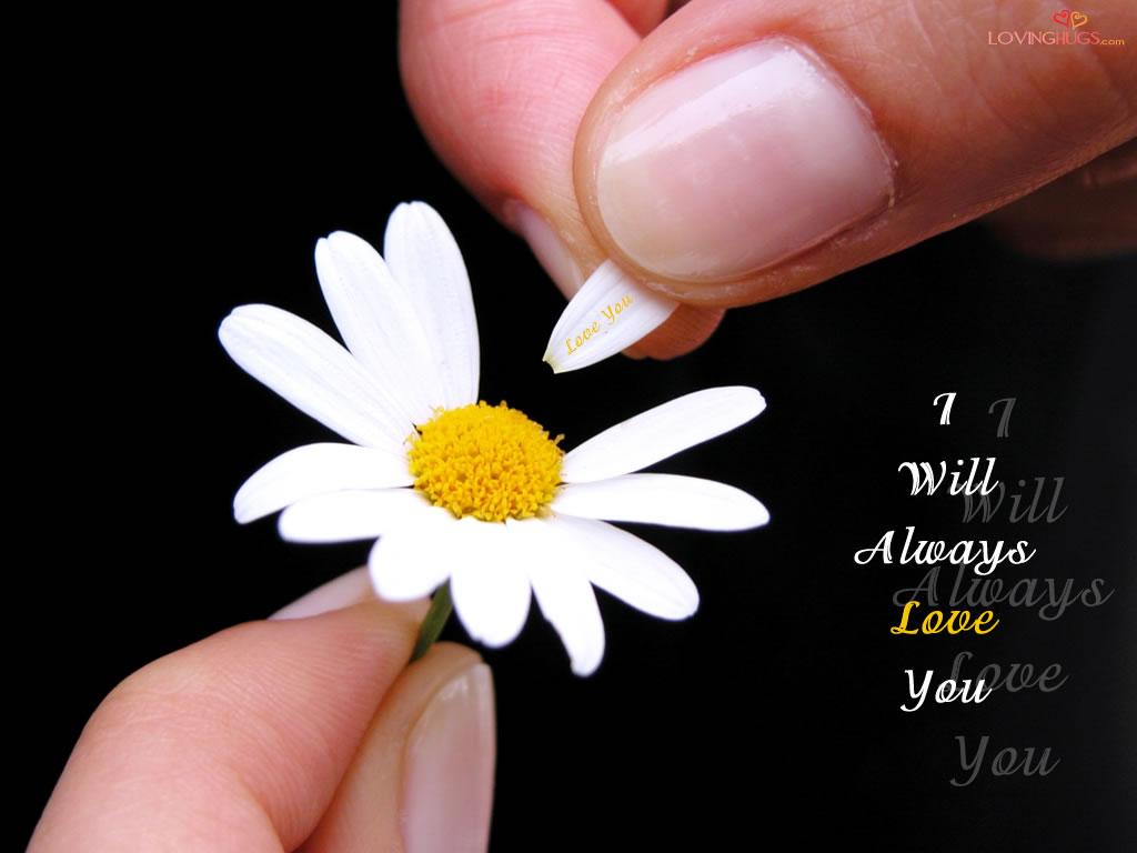 http://2.bp.blogspot.com/_hu1BlaK6oII/TOzrAngCW3I/AAAAAAAAAAk/Pl578KcOT4M/s1600/love-wallpaper3.jpg