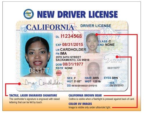 class c driver's license
