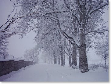 Essay For High School Application Robert Frost Stopping By Woods On A Snowy Evening Essay Scholarships  Paraphrase Summary Of The Poem Thesis Statements For Argumentative Essays also Write A Good Thesis Statement For An Essay Esl Lesson Plans And Worksheets Stopping By Woods On A Snowy Evening  Sample Essay Papers