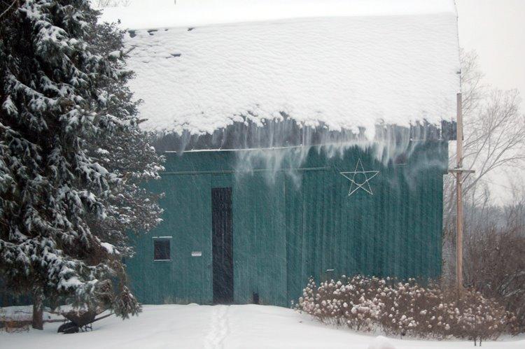 [snowstorm+121908+012+web.jpg]