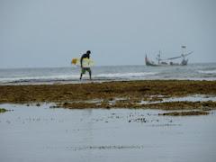 הולך על הריף-low tide