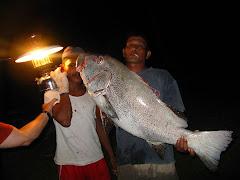 יש גם דגים בשפע לאכילה