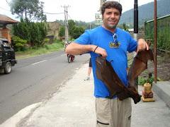 אני- בצפון באלי-מחזיק עטלף מבויית