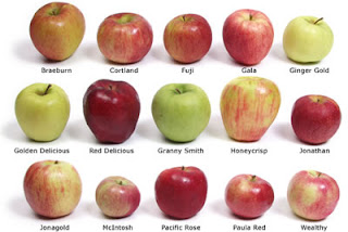 apples recipetips