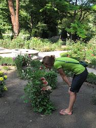 En el Real Jardín Botanico