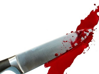 plainfield illinois stabbings