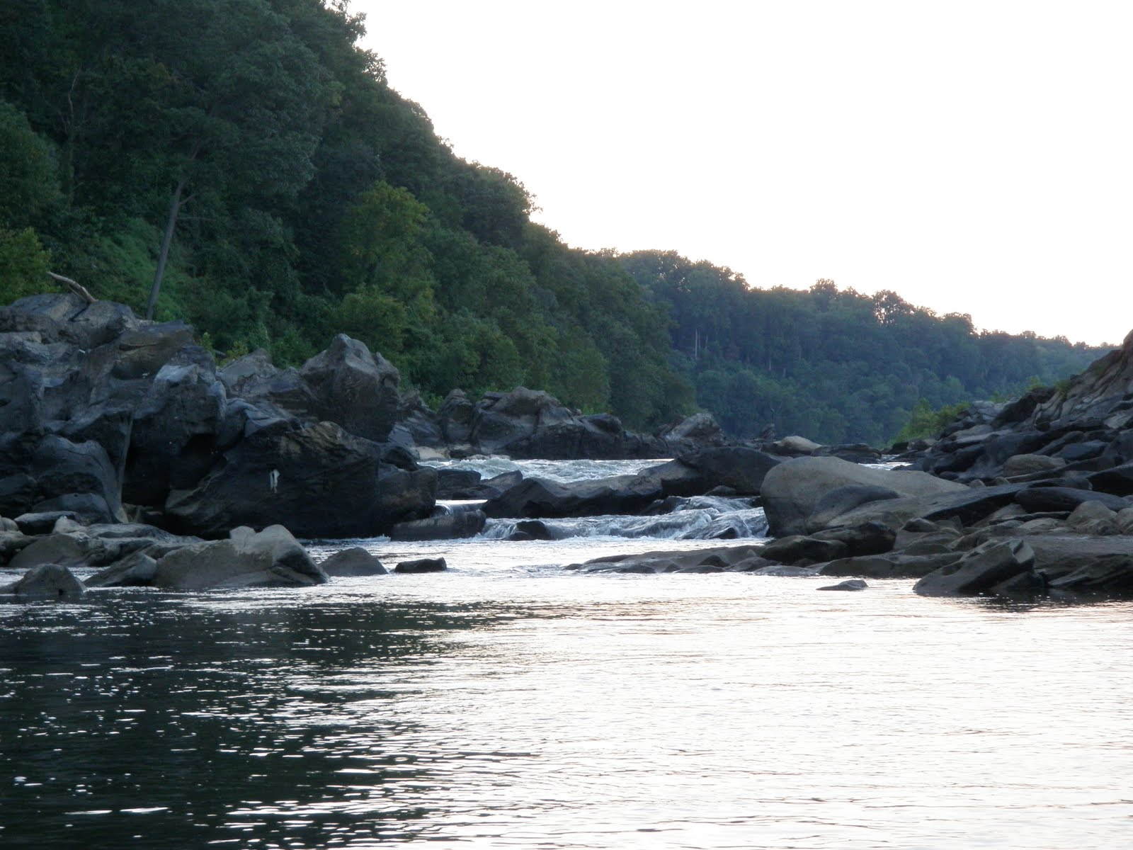 I only work to finance my fishing potomac above chain for Potomac river fishing spots