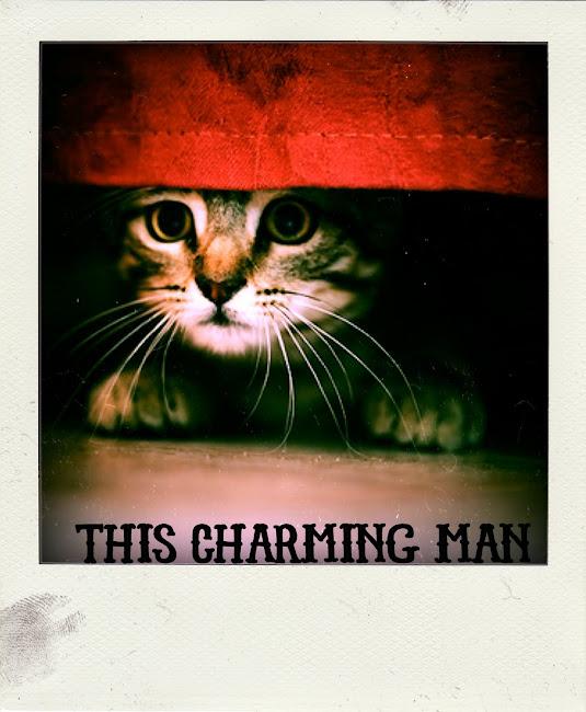 This Charming Man