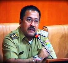 Wakil Bupati Rano Karno