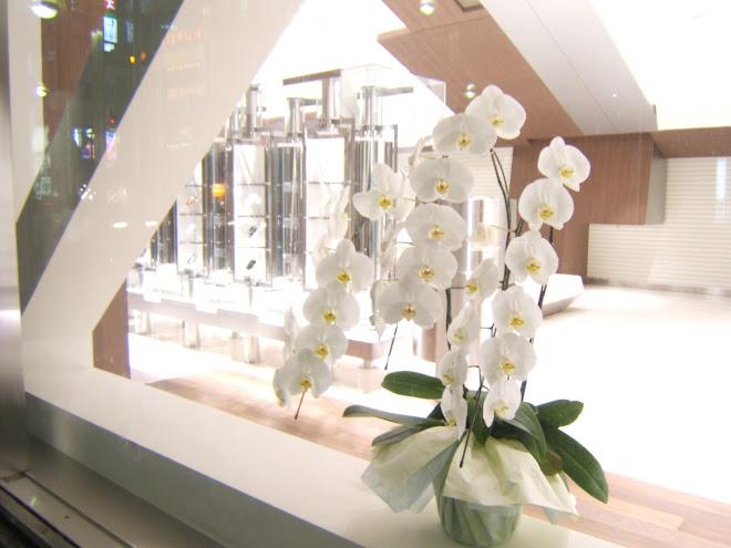 clinical interior design tokyo