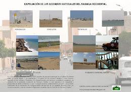 EXPOLIACIÓN DE LOS RECURSOS NATURALES DEL SAHARA OCCIDENTAL