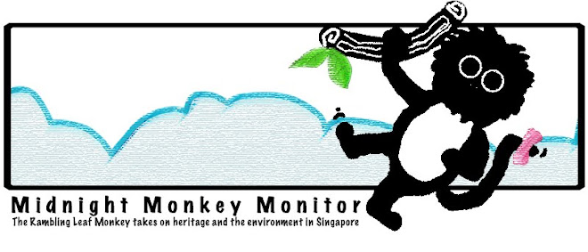 Midnight Monkey Monitor
