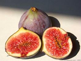 un fruit qui ne soit pas de saison