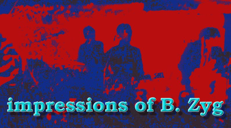 IMPRESSIONS OF B. ZYG