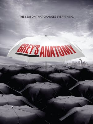 Grey's Anatomy S07E08 - Something's Gotta Give