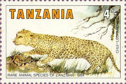 reproduction des panthères - tanzanie